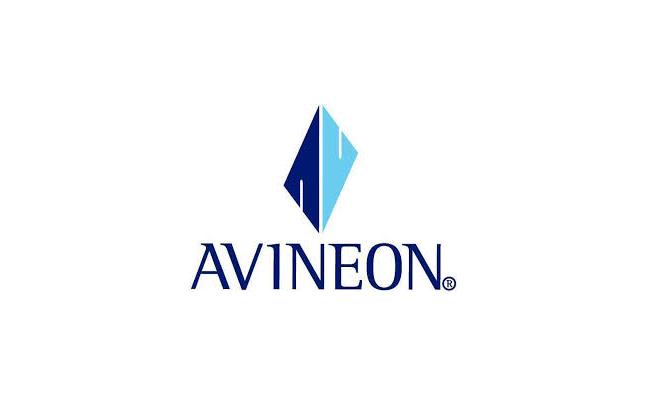 logo_avineon.png
