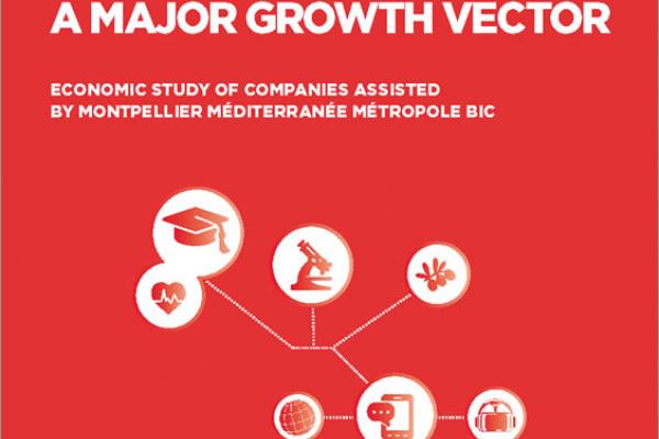 economic study BIC