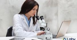 Webinar Laby : Laboratoire digital